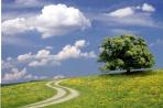 Weg zur Ruhe